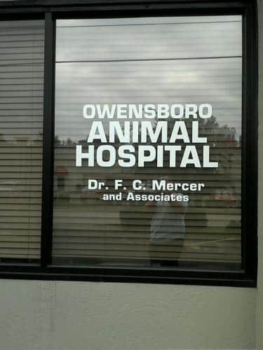 owb-animail-hospital-window-decal